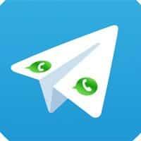 700 millones de usuarios activos frente a 50... Telegram tiene un largo camino por delante.