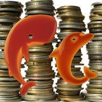 Delfín y Ballena son los grandes afectados de la jungla de Orange.