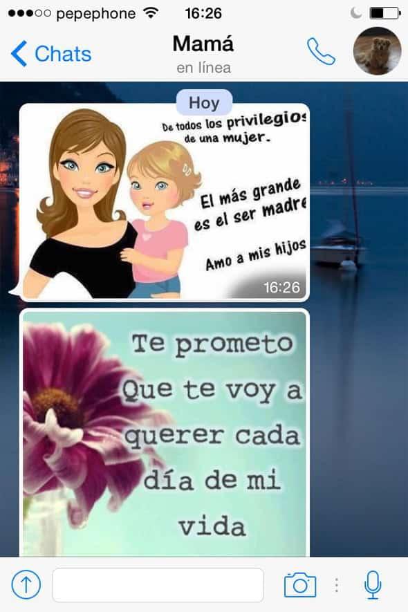 madre-whatsapp-6