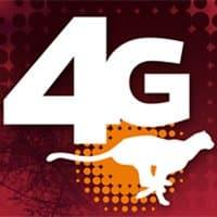 El guepardo es el animal que acompañará a los productos 4G de Ocean's.