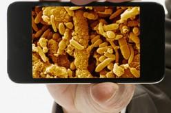 Las 10 bacterias que viven en los móviles