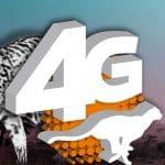 Ocean's 4G