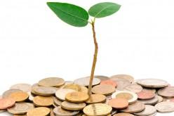 Pepephone busca financiación para seguir creciendo dentro y fuera de España