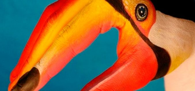 Tucán, de Orange, ofrece llamadas ilimitadas hasta octubre
