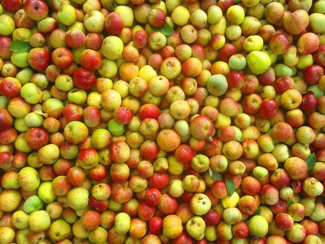 apple-manzanas