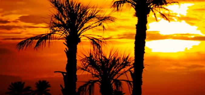 Angola, un oasis para Bq