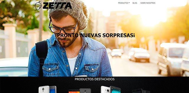 página web de Zetta
