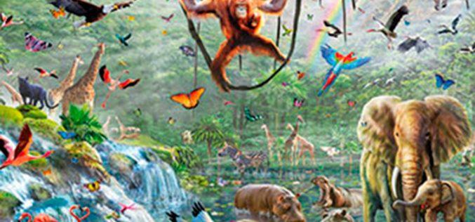 Orange culmina la renovación de sus planes prepago: adiós a la jungla
