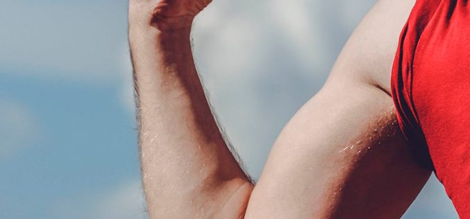 Digi saca músculo con su propia red de fibra óptica