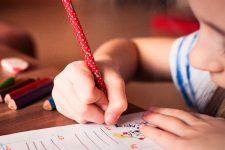 Lowi hace los deberes para conquistar a los estudiantes