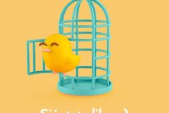 Oniti salva los muebles: cambia Orange por Masmóvil