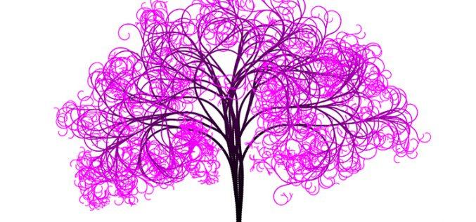 PinkBear y Lolo Phone, las ramas de Finetwork para captar más clientes