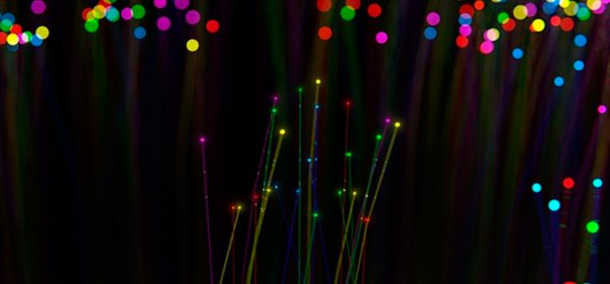 PinkBear da pistas sobre las futuras tarifas de fibra y móvil de Finetwork