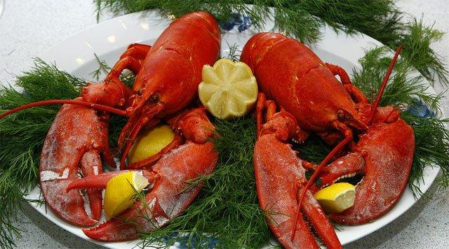 nuevas tarifas móviles de Lobster