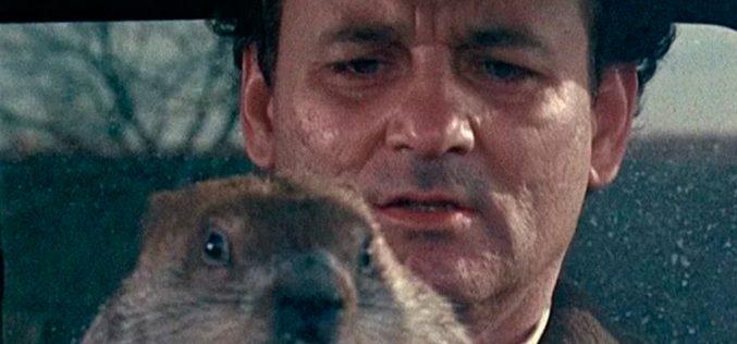 Vodafone, Lobster y el día de la marmota